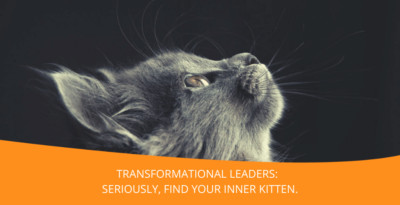 Transformational Leaders: Seriously, Find Your Inner Kitten